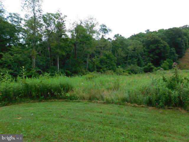 Tract 20 Section 1, AUGUSTA, WV 26704 (#WVHS112952) :: Network Realty Group