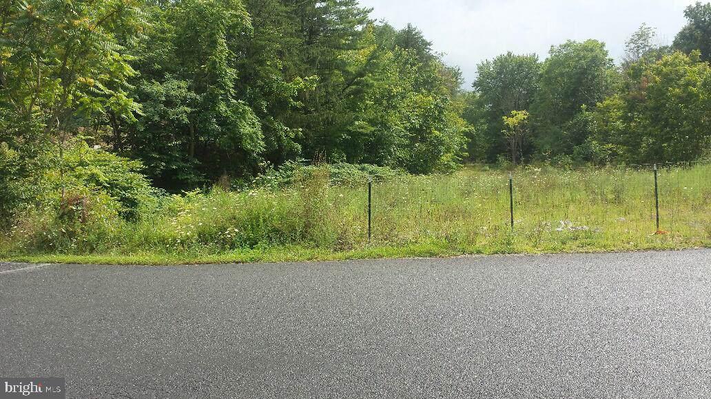 3297 Frankfort Highway - Photo 1
