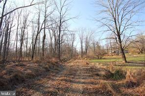 6 Arnwine, STOCKTON, NJ 08559 (#NJHT105492) :: Shamrock Realty Group, Inc