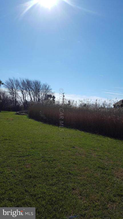 0 Deal Island Road, DEAL ISLAND, MD 21821 (#MDSO102500) :: Network Realty Group