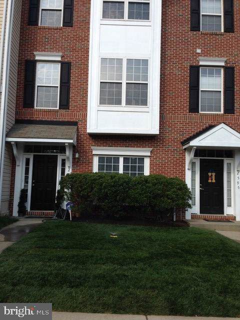 2597 Brown Alder Court, ODENTON, MD 21113 (#MDAA409816) :: Great Falls Great Homes
