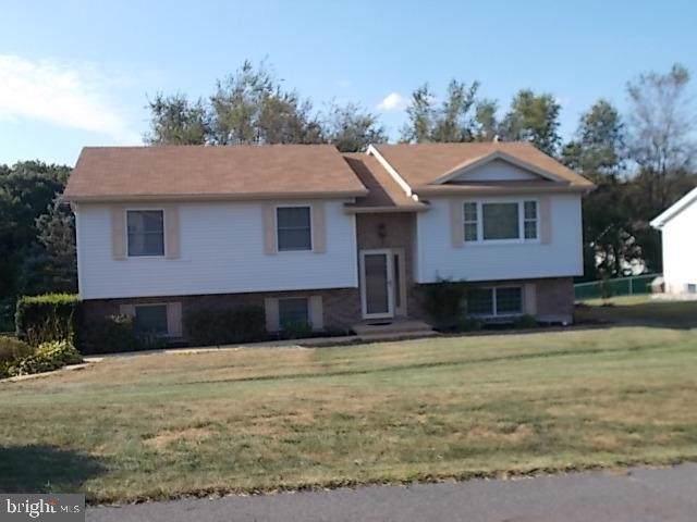 817 Pinewood Drive, POTTSVILLE, PA 17901 (#PASK127360) :: Ramus Realty Group
