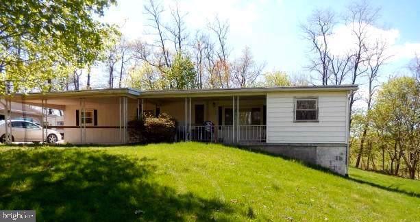 14 Peewee Lane, DUNCANNON, PA 17020 (#PAPY101238) :: Liz Hamberger Real Estate Team of KW Keystone Realty