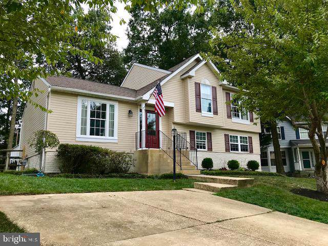 5324 Sea Raven Court, WALDORF, MD 20603 (#MDCH205852) :: The Daniel Register Group