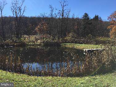 Mt Zion Road, SWANTON, MD 21561 (#MDGA131306) :: Keller Williams Pat Hiban Real Estate Group