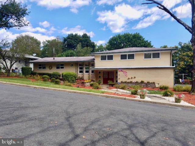163 Avenue D, SCHUYLKILL HAVEN, PA 17972 (#PASK127592) :: Ramus Realty Group