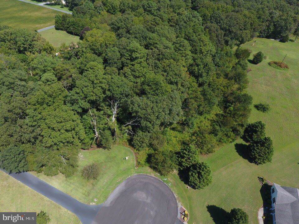 0 Choptank Landing Road - Photo 1