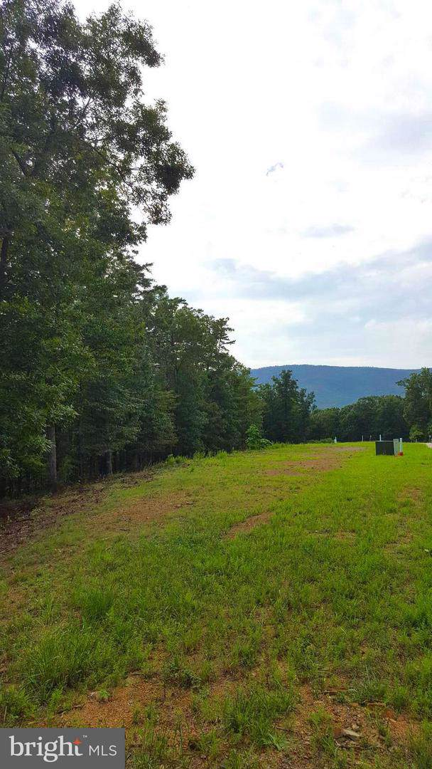 LOT 13 Creek Valley Drive, BASYE, VA 22810 (#VASH117140) :: The Piano Home Group