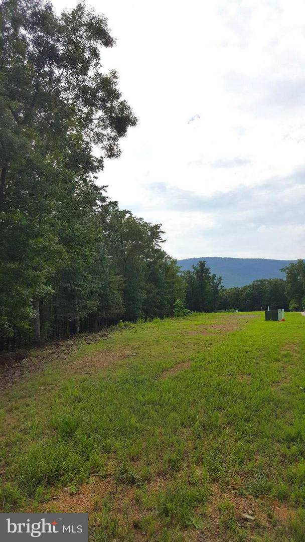 LOT 14 Creek Valley Dr, BASYE, VA 22810 (#VASH117142) :: LoCoMusings