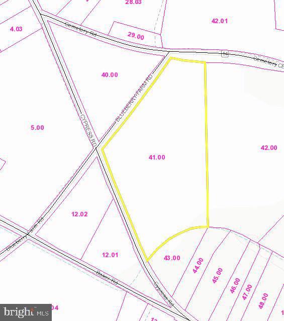 Cemetery Rd, SELBYVILLE, DE 19975 (#DESU147796) :: REMAX Horizons