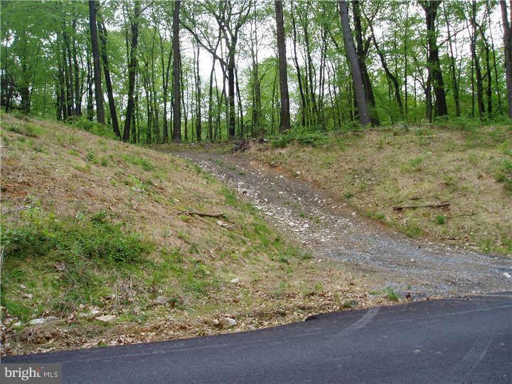 Powder Mill Hollow Road - Photo 1