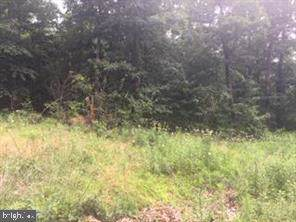 Perry Rd Lot 3, WINCHESTER, VA 22602 (#VAFV153220) :: Jacobs & Co. Real Estate