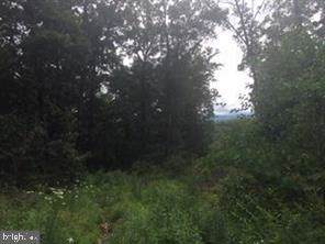 Perry Rd Lot 4, WINCHESTER, VA 22602 (#VAFV153222) :: Colgan Real Estate