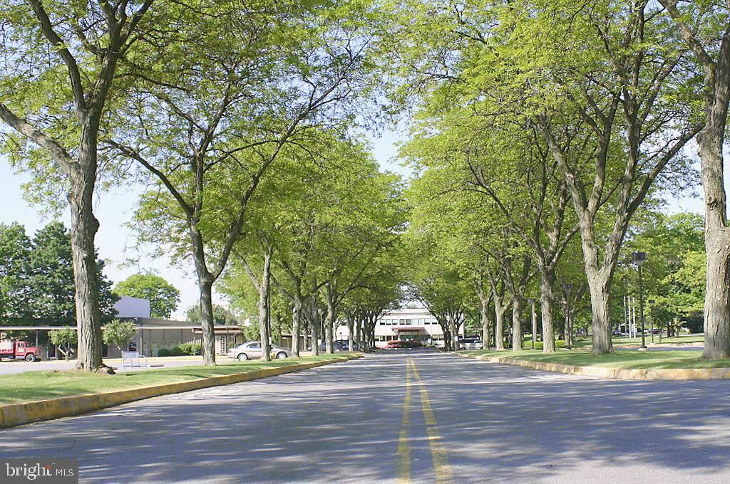 1000 New Holland Avenue - Photo 1