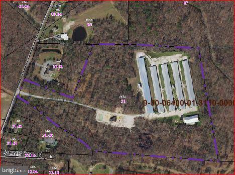 568 Myers Drive, HARTLY, DE 19953 (#DEKT233350) :: Linda Dale Real Estate Experts