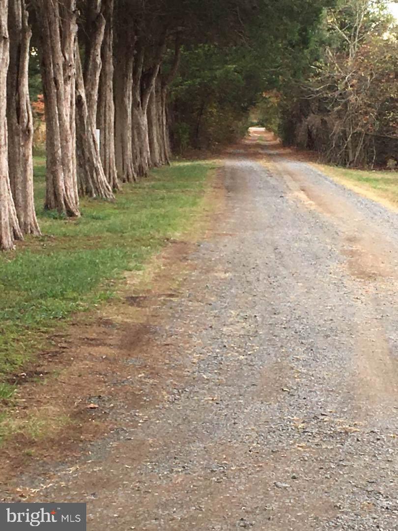 11950 Honey Grove Trail - Photo 1