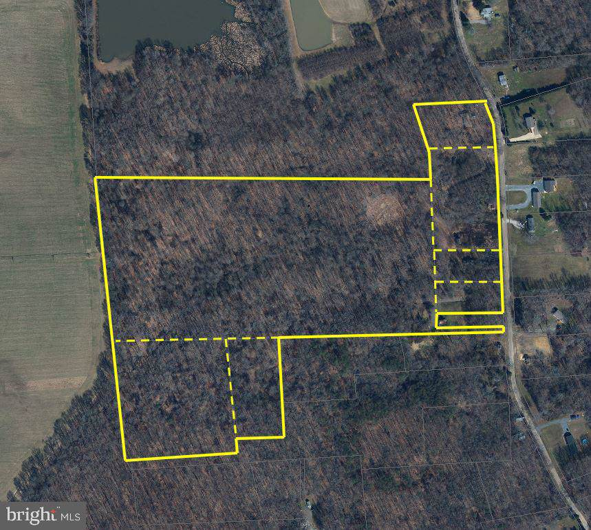 10698 Chesterville Forest Road - Photo 1