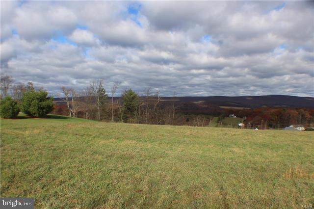 12 Cortland Court, ANDREAS, PA 18211 (#PASK128644) :: Keller Williams of Central PA East