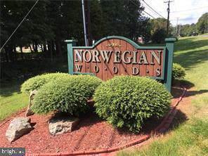0 Hickory Drive, POTTSVILLE, PA 17901 (#PASK128662) :: The Joy Daniels Real Estate Group