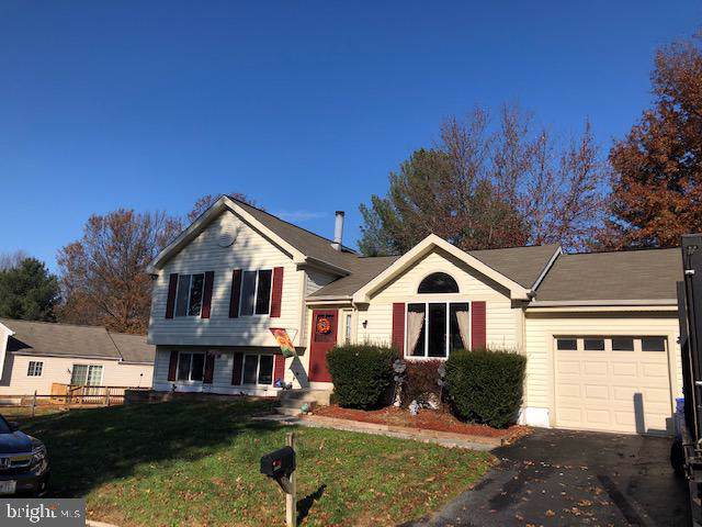 11715 Othello Terrace, GERMANTOWN, MD 20876 (#MDMC686832) :: Radiant Home Group