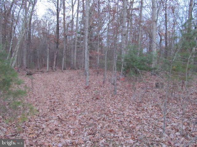 Lot H Timber Ridge, FRONT ROYAL, VA 22630 (#VAWR138694) :: A Magnolia Home Team