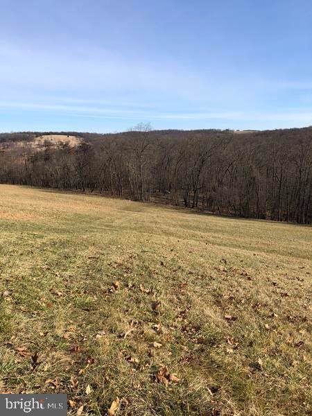 Farm View Lane, ROMNEY, WV 26757 (#WVHS113532) :: Sunita Bali Team at Re/Max Town Center