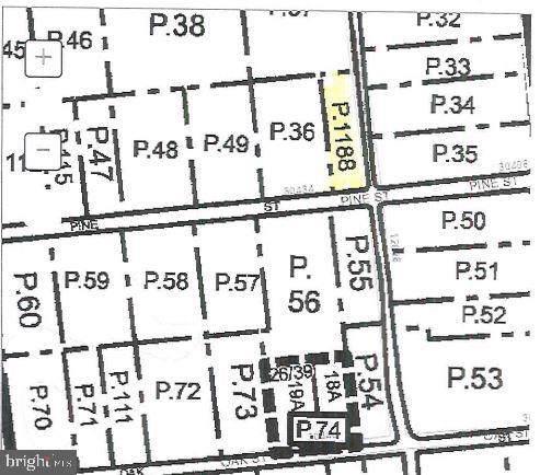 30434 Pine Street, PRINCESS ANNE, MD 21853 (#MDSO102922) :: Brandon Brittingham's Team
