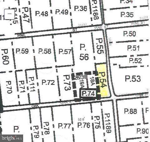0 Oak Street, PRINCESS ANNE, MD 21853 (#MDSO102924) :: Brandon Brittingham's Team