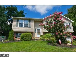427 Loop Road, POTTSTOWN, PA 19464 (#PAMC632270) :: Viva the Life Properties