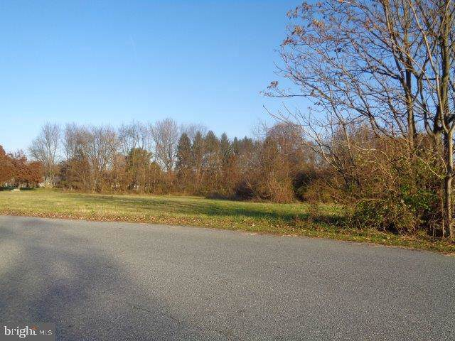 Plaza Drive, BOILING SPRINGS, PA 17007 (#PACB119710) :: The Joy Daniels Real Estate Group