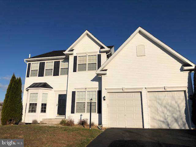 329 Spring Branch Court, PURCELLVILLE, VA 20132 (#VALO399446) :: Gail Nyman Group