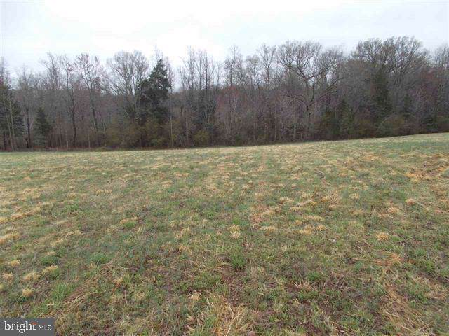 0 Landcaster Court, LOUISA, VA 23093 (#VALA120264) :: AJ Team Realty