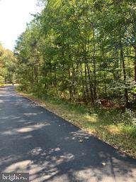 177 Yorktown Drive, RUTHER GLEN, VA 22546 (#VACV121294) :: AJ Team Realty