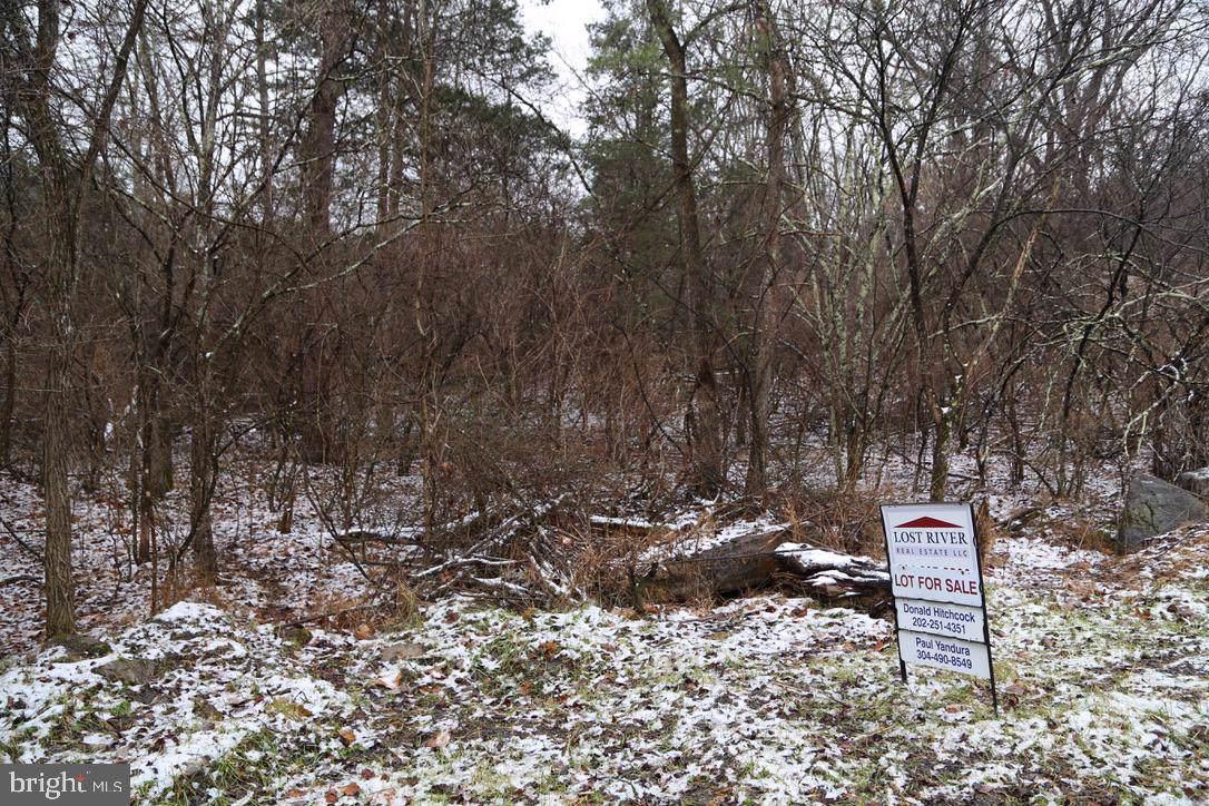 A11 Mt Laurel Circle - Photo 1