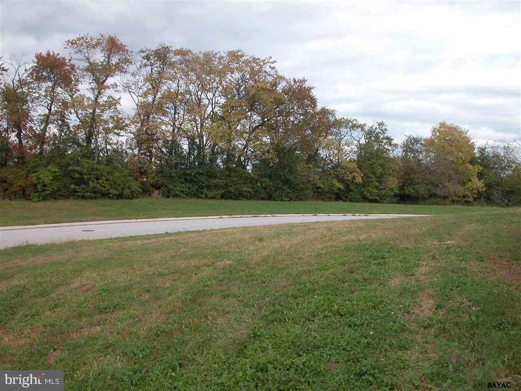 935 Shenandoah Lane - Photo 1