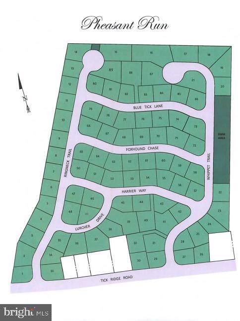 Tick Ridge Road, WAYNESBORO, PA 17268 (#PAFL170442) :: AJ Team Realty