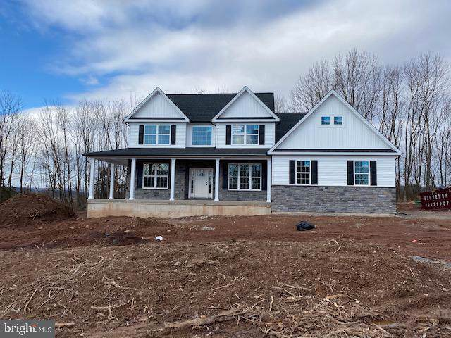 1007 Briar Ridge Way, EAST GREENVILLE, PA 18041 (#PAMC635182) :: Nexthome Force Realty Partners