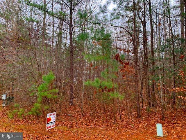 11137 Piney Forest Drive, BUMPASS, VA 23024 (#VASP218696) :: John Lesniewski | RE/MAX United Real Estate