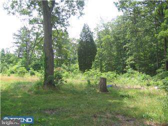 568 Zoe Road, SICKLERVILLE, NJ 08081 (#NJCD384686) :: LoCoMusings