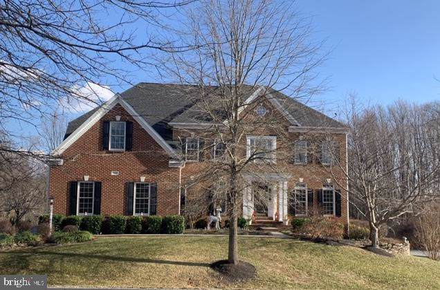 24202 Heather Field Court, ALDIE, VA 20105 (#VALO401498) :: LoCoMusings
