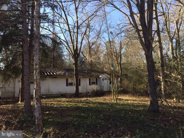 24204 Cedar Lane, GEORGETOWN, DE 19947 (#DESU154226) :: Colgan Real Estate