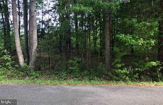 Jouett School Road, MINERAL, VA 23117 (#VALA120438) :: RE/MAX Cornerstone Realty