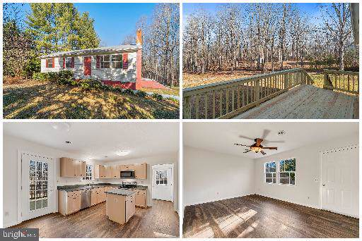 10255 Dutch Hollow Road, RIXEYVILLE, VA 22737 (#VACU140458) :: Cristina Dougherty & Associates
