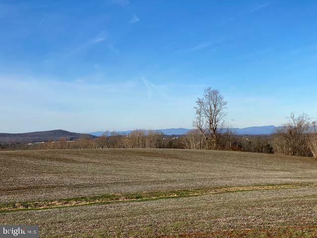 Lot B Fairfield Lane, STEVENSBURG, VA 22741 (#VACU140462) :: Cristina Dougherty & Associates