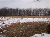 Bulk Plant Road, LITTLESTOWN, PA 17340 (#PAAD110132) :: The Heather Neidlinger Team With Berkshire Hathaway HomeServices Homesale Realty