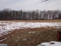Bulk Plant Road, LITTLESTOWN, PA 17340 (#PAAD110132) :: Flinchbaugh & Associates