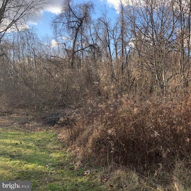 Big Spring Road At Old York Road, NEW CUMBERLAND, PA 17070 (#PAYK131764) :: Liz Hamberger Real Estate Team of KW Keystone Realty