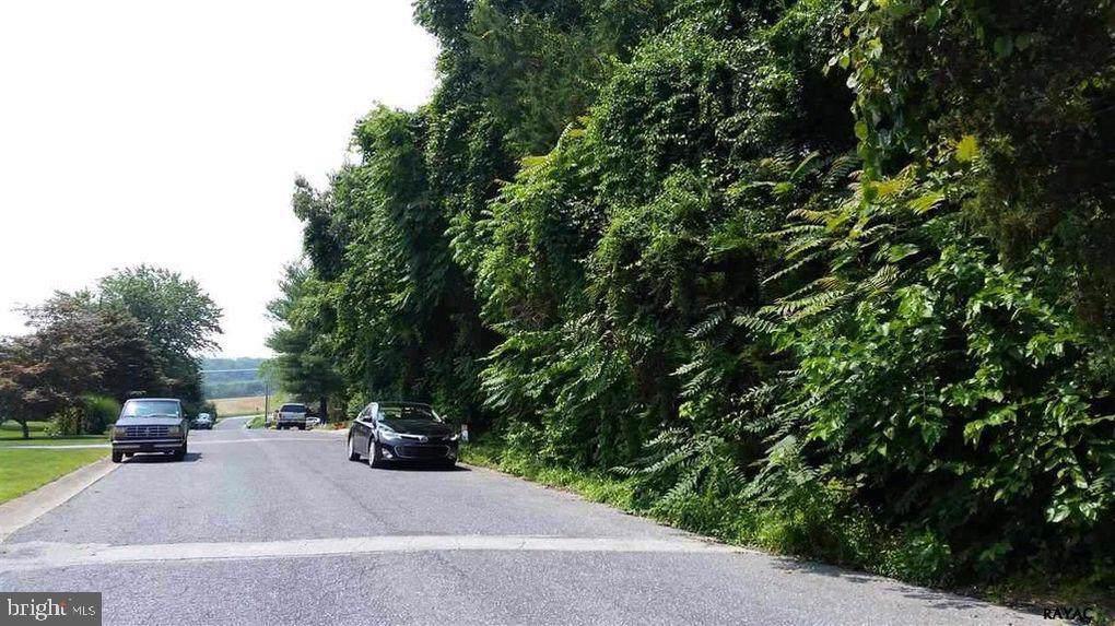 Lot 17 Pheasant Run Road - Photo 1