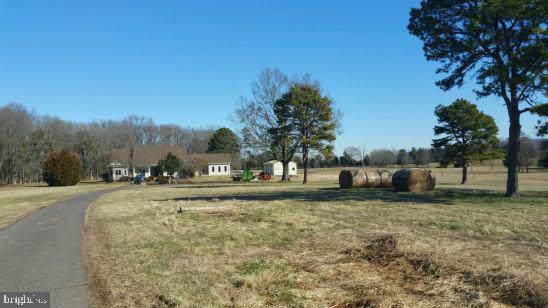 10501 Twin Mountains Road, RAPIDAN, VA 22733 (#VACU140492) :: A Magnolia Home Team