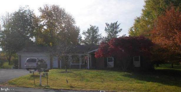 204 Laurel Hill Drive, STEPHENS CITY, VA 22655 (#VAFV155318) :: Pearson Smith Realty